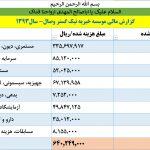 گزارشات مالی 1393